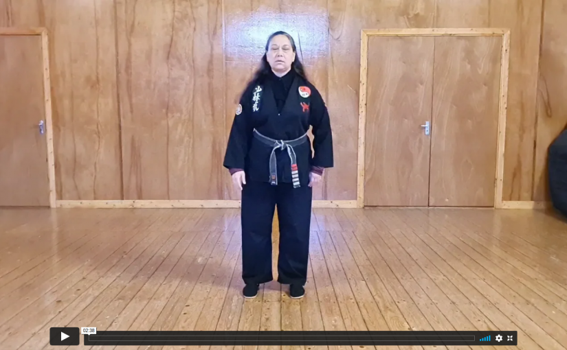 24 Combined Tai Chi Form 1st 5 Postures
