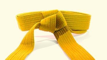 Yellow Belt Ie Pu Tue Ta 5-7